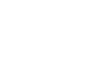 SALT TO SEA LOGO
